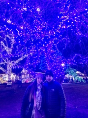 Peddlers Village at Christmas